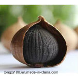 Extracto negro sano del ajo para el condimento