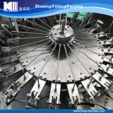 Completare la riga di riempimento di chiave in mano dell'impianto di imbottigliamento dell'acqua potabile