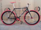 Горячее сбывание резвится Bikes дороги, велосипед SR-GW25 следа
