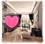 Розовый тип индикация сердца СИД пузыря