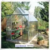 Minigarten-Glasgewächshaus für Familie