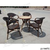 Garten-Möbel, im Freienmöbel (JJ-144TC)