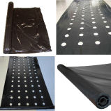 Plastic Mulch Film UV Resistant Plastic Film Hot Sale