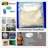 Испытайте испытание Enan & Testosteron Enanthate стероидов эстера сырцовое с очищенностью 99.1%