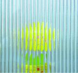6mm ontruimen Gevormd Glas voor Decoratie Intenal