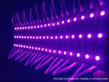 SMD 5054 화소 방수 LED 모듈