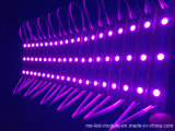 SMD 5054 wasserdichte LED Baugruppe des Pixel-
