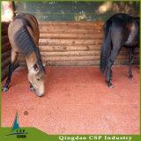 Плитки Paver настила плитки лошади собаки стабилизированные резиновый