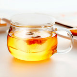 卸し売りハンドメイドの二重壁のガラスコーヒーカップ(CHT8608)