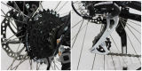 Vélo de montagne électrique avec Carnk Bafang Motor Moped avec pédales Pedelec (JB-TDC28L)