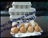 Máquina de molde da polpa da máquina da bandeja da caixa do ovo