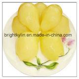 과일 통조림 통조림으로 만들어진 배 또는 통조림