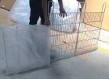 Galvanización plegable de la cesta del acoplamiento soldado del alambre de la jaula del hierro