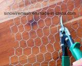Sailin Edelstahl-Draht für Gebäude-Zaun