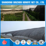 紫外線Protectionの100%新しいVirgin Agricultural HDPE日曜日Shade Net