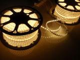 SMD5050 LED 밧줄 빛 - 고전압 110V/220V LED 지구 (HVSMD5050-60)