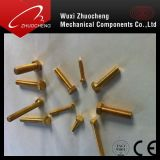 DIN933 DIN931 Asme Brass Hex Cap Screw com ISO Certificate