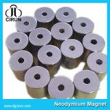 N35 30*5mm de Magneet van de Zeldzame aarde van Nedymium van de Schijf voor de Borstel van de Tank van de Flits