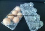 ペットに明確なプラスチックの箱をする機械を形作るプラスチック卵の皿