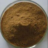 Poudre d'extrait d'herbes de Brahmi/extrait de Bacopa Monniera