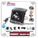 デジタル手首上のプローブ(BW560V-PRO)が付いている獣医の超音波のスキャンナー