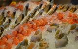 O terno da máquina de gelo do floco da neve para o Sashimi, retem o frescor