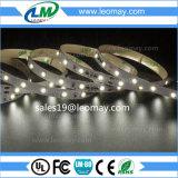 Lumière de bande continuelle du courant SMD3528 DEL avec du CE d'UL pour la décoration d'intérieur