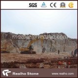 Китайские естественные имеют блок карьера мраморный каменный для проекта