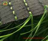 Het Gras van plastieken voor het Multifunctionele, Duurzame en Natuurlijke Kijken
