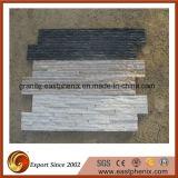 Mattonelle nere naturali calcare/della quarzite per la decorazione della parete
