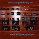 12V 6.0ah nachladbare VRLA AGM gedichtete Leitungskabel-saure Speicherbatterie