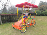 Bicicleta para el parque de atracciones
