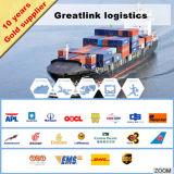 Frete de mar do mercado LCL/FCL de ASTM F876/877 EUA
