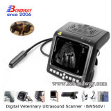Scanner portatile veterinaria Doppler a ultrasuoni con sonda