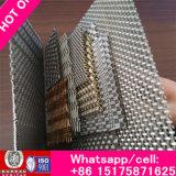 Rete metallica perforata decorativa ricca per la rete metallica decorativa delle pareti (rivestimento della parete)