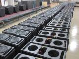 최신 판매 직업적인 선 배열 스피커 직업적인 오디오 (CA008)