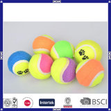 De in het groot Hoogstaande en Goedkope Bal van het Tennis van het Gebruik van het Huisdier