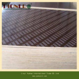 12mm Black Film Faced Plywood Forthailand Market