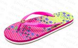 Новые тапочки Flop Flip лета типа для женщин (RF16190)