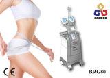 La congelación de la celulitis o la forma de grasa corporal Máquina