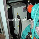 Tipo silenzioso di alto mare originale generatore di prezzi di vendita della fabbrica e del pannello di controllo di uso 100kVA