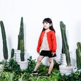 Les enfants de laines de 100% vêtant des gosses ont tricoté le chandail pour des filles