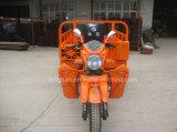 中国の工場製造者のスマートな3つの車輪のオートバイ