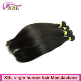 Cabelo humano de Remy do Virgin indiano da venda por atacado do tipo de Xbl
