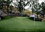 ゴルフパット用グリーン、Criketのゲートの球、人工的な草