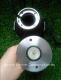 3W Asymmetrical LED Swimming Pool Light (JP94312AS)