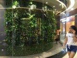 Piante di alta qualità e fiori artificiali del giardino verticale Gu-Mx2091309
