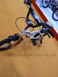 ضخم مشترى يمزح درّاجة, [بيسكلتس] [د] [كرّترا], [نو مودل] طفلة درّاجة