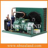 Unidad de condensación de la conservación en cámara frigorífica