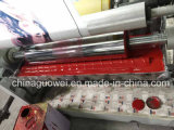 Shaftless 4 Color Gravure Printing Press für Plastic Film (Pneumatic Shaft)